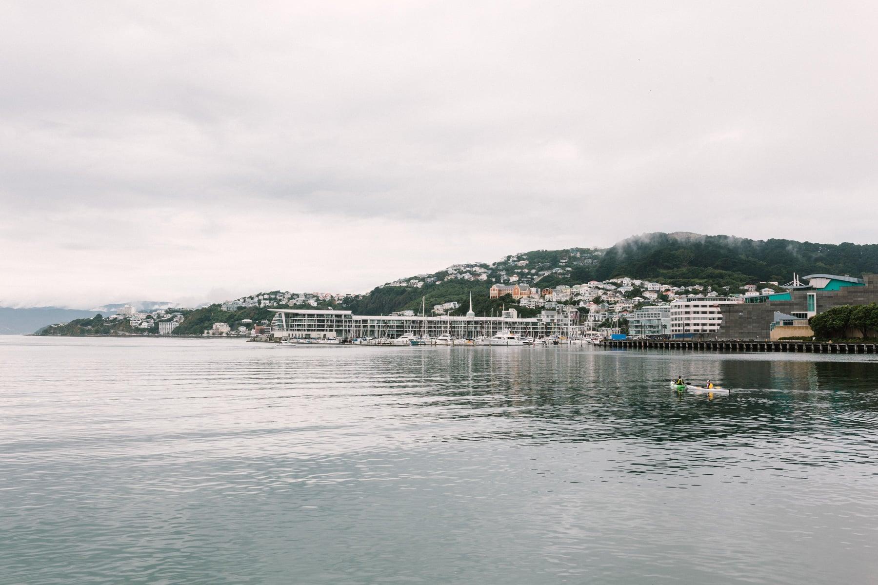 Fod descending in Wellington